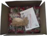 Smile Rose - 5000 roses